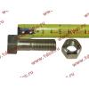 Болт M14х45 карданный с гайкой H2/H3 HOWO (ХОВО) Q151C1445 фото 2 Тамбов