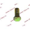 Болт пустотелый М10х1,0 (штуцер топливный) H HOWO (ХОВО) 81500070054 фото 3 Тамбов